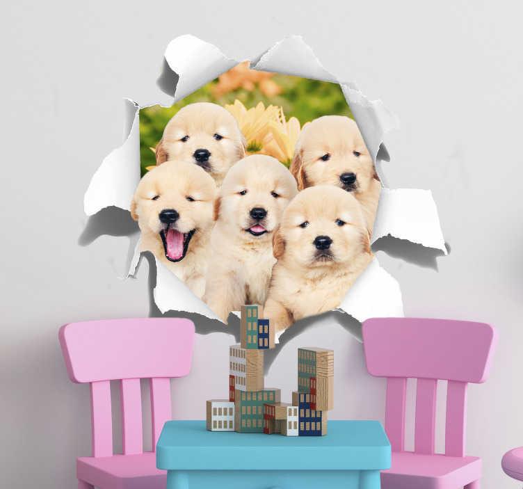 TenVinilo. Vinilo pared trampantojo cachorros. Vinilo formado por la ilustración de un hueco en la pared, del cual aparecen cinco cachorros de golden retriever. Vinilos Personalizados a medida.