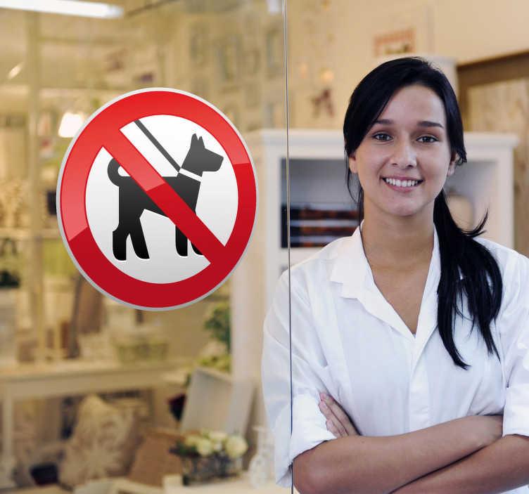 TenStickers. 狗禁止标志贴纸. 窗口贴纸说明标志区域不允许狗。商店入口和商业区的理想贴纸。这个直截了当的醒目贴花有一个明确的含义,每个人都会理解。