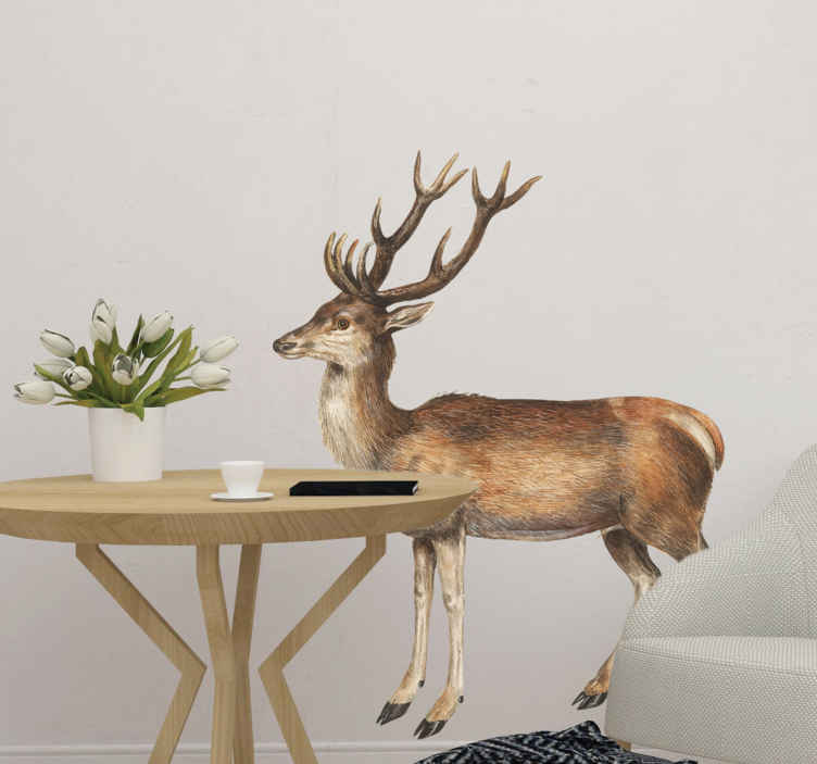 TenStickers. Muursticker wilde dieren vintage design deer. Interesting deer wall sticker and deer stickers for the living room. Enjoy our wilde animals wallstickers and other animal stickers. Easy to apply!