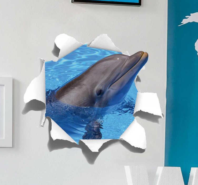 TenStickers. Sticker Original Dauphin. Ce sticker trompe l'oeil représente un joyeux dauphin en 3D sortant du mur dans un effet illusion réussi, un adhésif photo murale originale et unique.