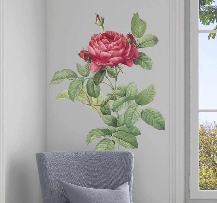 TenStickers. 红玫瑰客厅墙装饰. 客厅的红玫瑰墙贴是装饰内饰并添加其独特个性的完美理念。检查花贴纸。