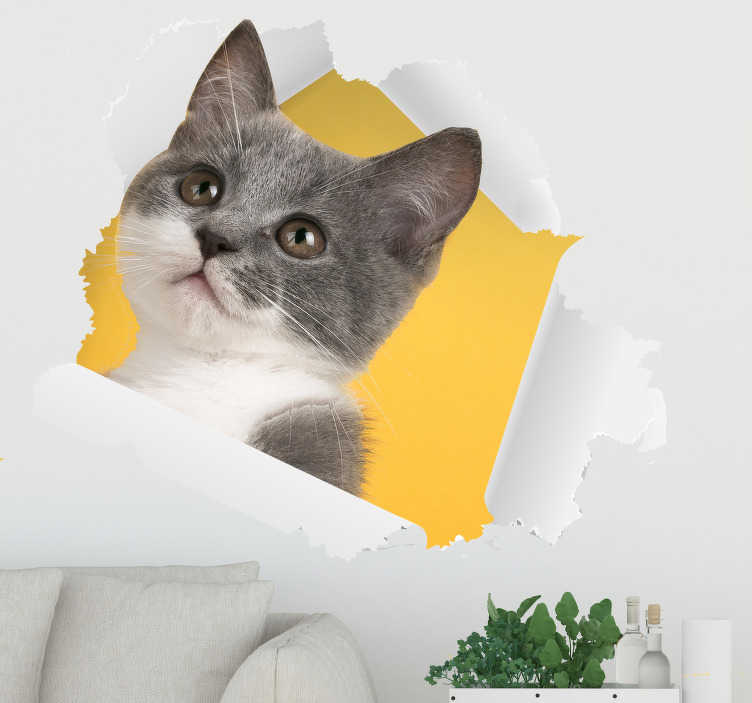 TenStickers. 3D Cat Sticker wall decor. A 3D cat wall decal that you can decorate your home with. This design is original and unique and will beautify your home in a special way.