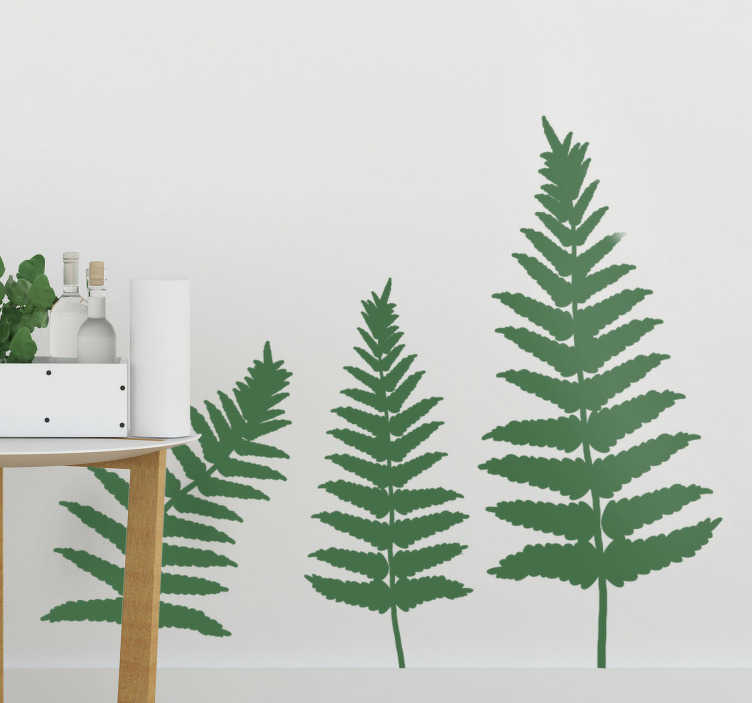 TenStickers. Fern Pattern plant wall decal. Easy to apply wall sticker of a fern plant that is very decorative and you can apply it in the space of your flower or the absence of it.
