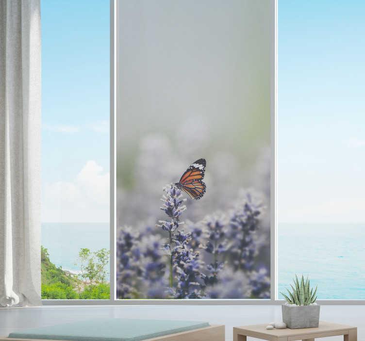 TenStickers. Vlinders zelfklevende raamsticker. Eenvoudig aan te brengen decoratieve zelfklevende raamsticker van een bloemenplantveld met vlinder die ervan geniet. Het zal elk oppervlak in huis verfraaien.