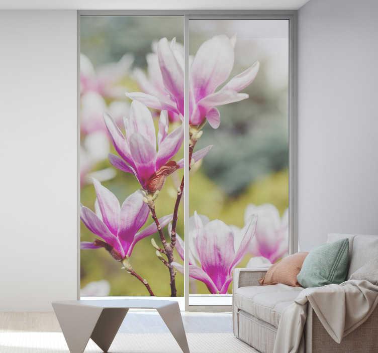 TenStickers. Magnolie blumen fenster aufkleber. Dekorativer Fenster Aufkleber für wohnzimmer mit einer magnolienblume mit einem durchscheinenden hintergrund, um dem haus glamour zu verleihen.