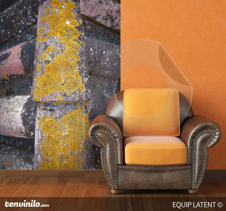 TenStickers. Sticker toit détail. Personnalisez les murs de votre maison avec cette originale photo murale de Latent Estudi, une illustration de toit recouvert de tuiles anciennes pour donner un côté rétro à votre salon.