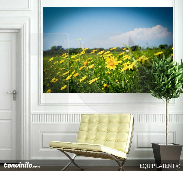 TenStickers. Sticker foto gele bloemen weide. Deze muursticker omtrent een prachtig landschap vol gele kleurrijke madeliefjes. Vrolijke, gezellige en warme decoratie van uw woning.