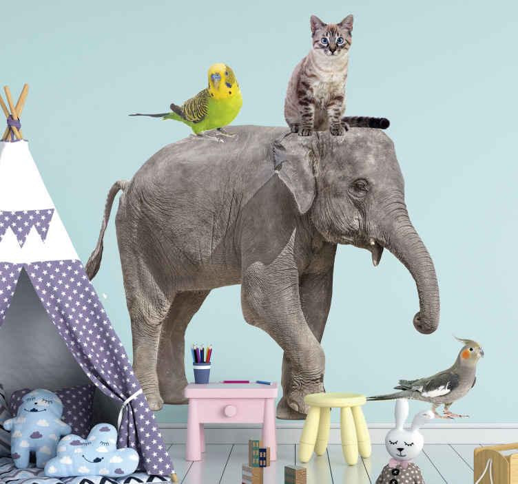 TenStickers. Divers animaux autocollant animal sauvage. Adhesif animal pour l'espace des enfants avec un éléphant géant et d'autres animaux. L'acheter dans la meilleure taille appropriée pour un espace.