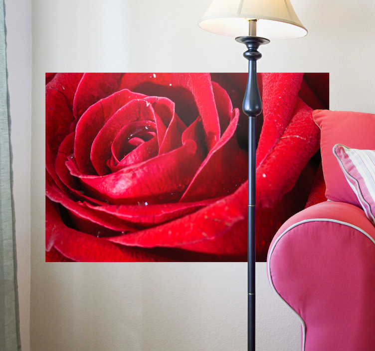 TenStickers. Sticker detailschot roos. Deze muursticker van een in detail gefotografeerde roos brengt extra kleur toe in uw woning. Ideaal om uw woning mee te decoreren.