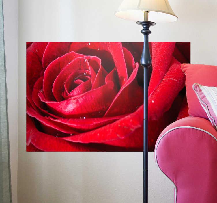TenStickers. 红玫瑰墙壁画贴纸. 每次经过它时,这个玫瑰贴纸会让你闻到玫瑰味!确保用这个美丽的设计装饰你的卧室或客厅!