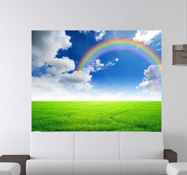TenStickers. Regenbogen Aufkleber. Mit diesem wunderschönen Graß Wandtattoo mit einem Regenbogen, weißen Wolken, einem blauen Himmel und können Sie Ihre Wand zum Hingucker machen.