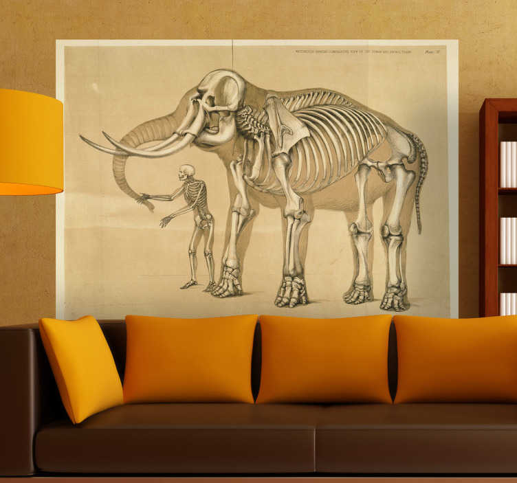 TenStickers. Man and Elephant Skeleton Decorative Decal. This special design shows the skeleton of man and an elephant. This elephant wall sticker is perfect to obtain that original look for your home!