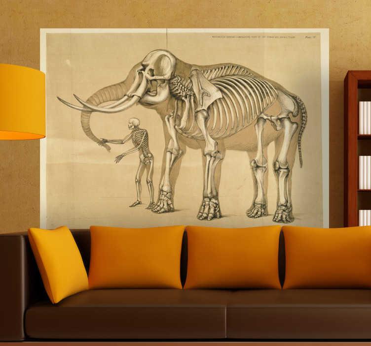 Sticker mural tableau homme et éléphant