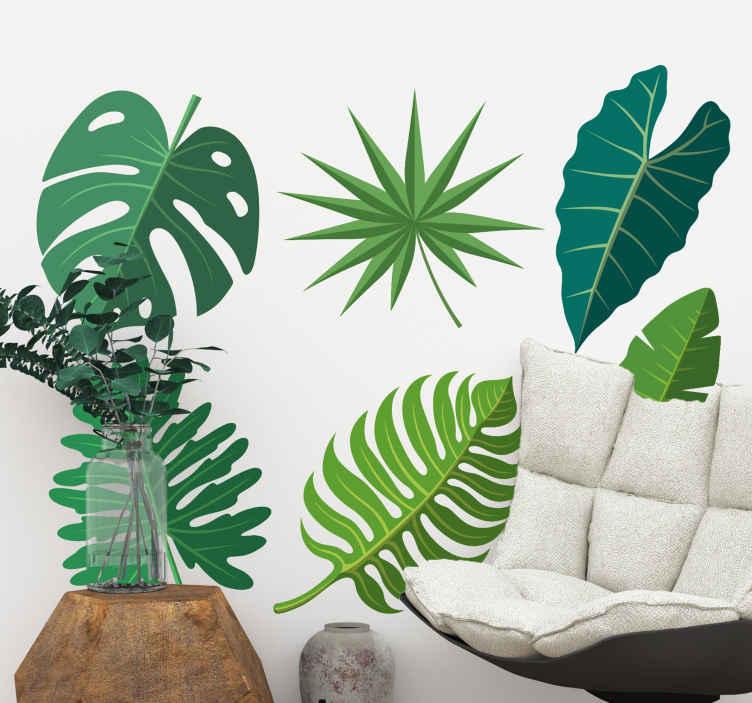 TenVinilo. Pack 6 vinilos plantas variedad hojas tropicales. Vinilo pared salón de plantas tropicales para embellecer cualquier estancia trayendo un poco de naturaleza. Alta calidad ¡Envío a domicilio!
