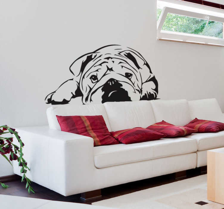 TenStickers. Autocolante decorativo bulldog. Decore as suas paredes com este autocolante decorativo de um adorável bulldog, para fazer uma homenagem ao seu cão preferido.