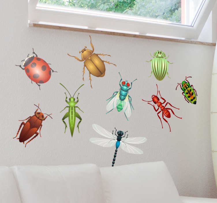TenStickers. Different Bug Collection Sticker. This wall decal includes a variety of bugs like flies, grasshoppers, beetles, ladybirds and ants.