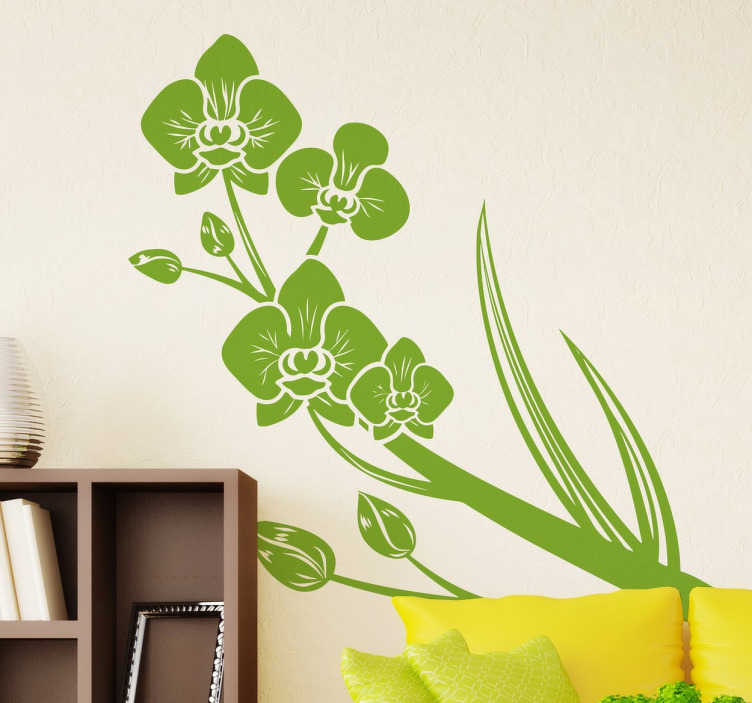 Tenstickers. Vihreät orkideat tarra. Jos orkideat ovat suosikkikukiasi, tämä tarra sopii sinulle täydellisesti siihen, että lisäät henkilökohtaisen ja kukkaisen ilmeen kotiisi.