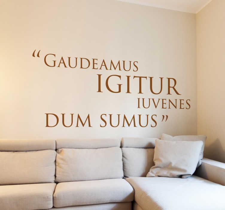 """TenStickers. Adesivo frase em latim sobre a juventude. Adesivos frases com um provérbio clássico """"Gaudeamus igitur iuvenes dum sumus"""" que significa """"Disfrutemos enquanto somos jovens""""."""