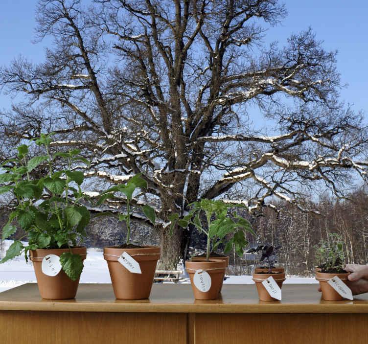TenStickers. Fototapeta zimowe drzewo. Tapeta na ścianę przedstawiająca piękny zimowy krajobraz z wielkim drzewem opruszonym śniegiem w centrum.