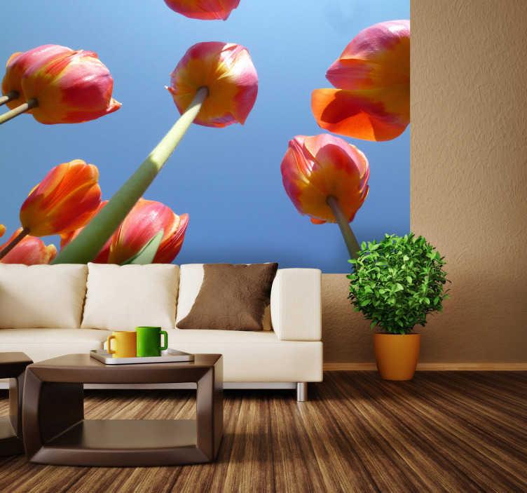 TenStickers. Naklejka tulipany na tle nieba. Naklejka dekoracyjna w formie realistycznej fotografii. Obrazek przedstawia czerwono-żółte tulipany na tle nieba. Zdjęcie zostało wykonane z ciekawej perspektywy.