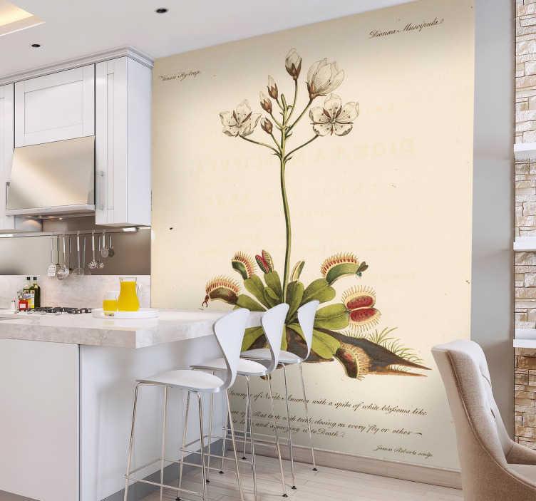 Wallstickers blomster antik botanisk plante