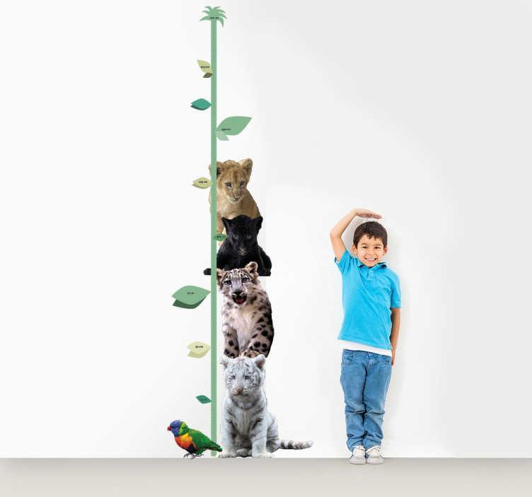TenStickers. Wandtattoo Messlatte Dschungeltiere. Wandtattoo für das Kinderzimmer. Wandtattoo einer Messlatte, die eine Ranke mit einem Löwen, einem Panther und einem Leoparden darstellt.
