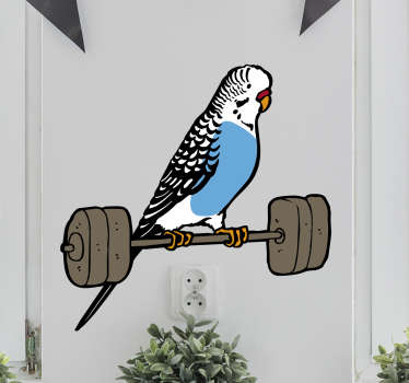 Decorative bird wall art sticker design with the feature of a parakeet on a weight lifter. An amazing design for any space.