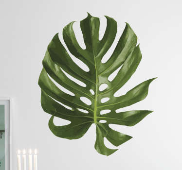 Vibrant green plant wall sticker of a large leaf of the aptly named Swiss cheese plant, otherwise known as the monstera deliciosa. This leaf wall sticker is just what you need to bring a touch of nature to the home decor in your living room, dining room or bedroom.