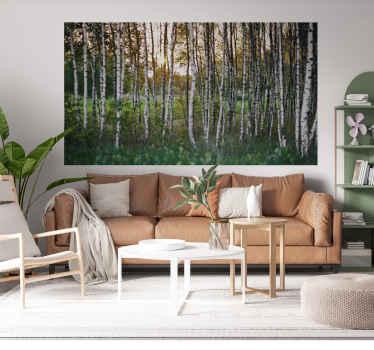 Adesivo fotomurale con alberi di betulle