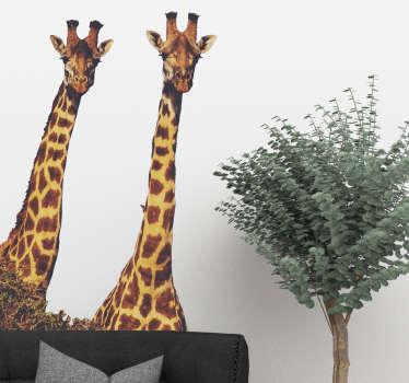Muursticker giraffe realistisch