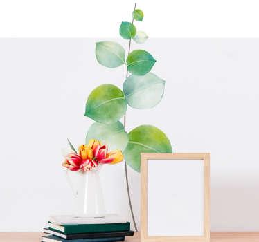 Sticker Plante Eucalyptus