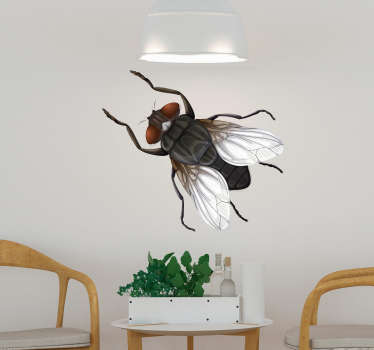 Decorative insect wall sticker with the design of a house fly. Available in different sizes. Easy to apply and self adhesive.