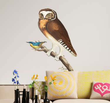 Decorate your home with a fantastic wall art sticker, depicting a bird and an owl perched comfortably on a branch! Available in 50 colours.