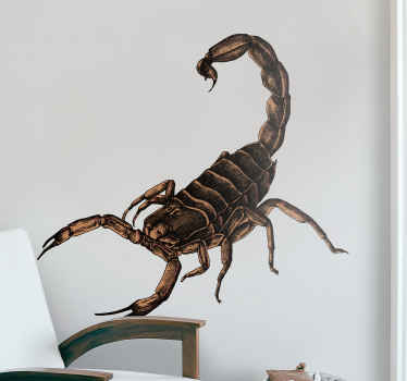 Decorative insect wall sticker with a scorpion design. It is easy to apply, self adhesive and available in any required size.