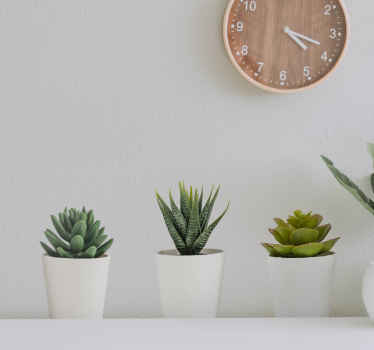 3D Cacti Pots Wall Mural stickers