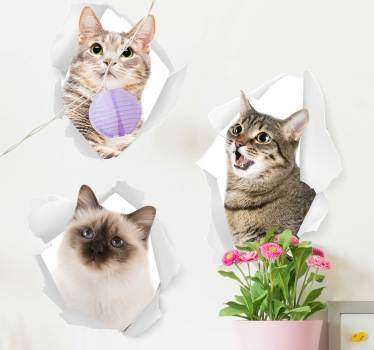 This animal sticker represents cats in a realistic style, going out from the wall : to show everyone how much you love cats !