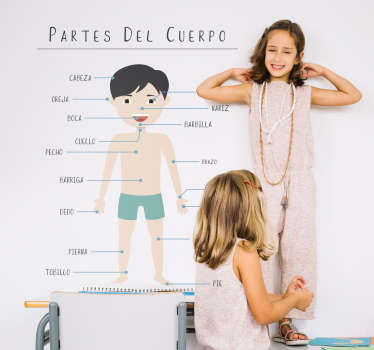 Vinilo para pared educativo para niños diseñado con las partes del cuerpo. Puede elegir el tamaño que necesite. Fácil de colocar.
