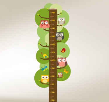 Children animal height chart sticker featured with different owls on tree branch along the vertical surface of the chart.