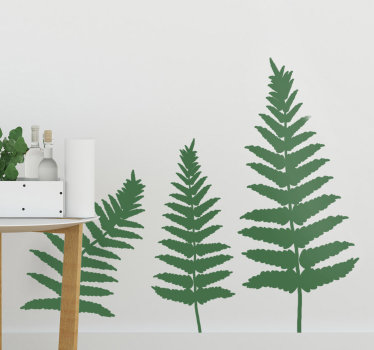 Easy to apply wall sticker of a fern plant that is very decorative and you can apply it in the space of your flower or the absence of it.