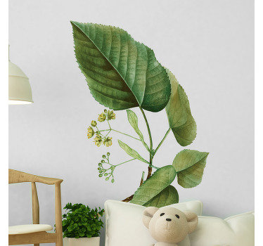 Decorative wall decal of a leaf plant of linden in it beautiful natural looking green colour. Easy to apply and available in size options.