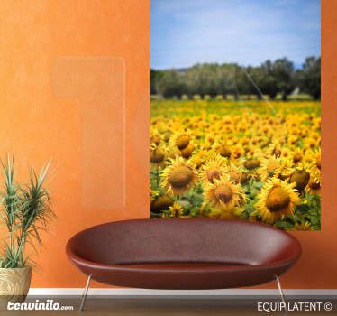 Photo Mural - Latent Estudi Photography. Beautiful field of sunflowers under a blue sky. Bring colour to any room with this mural.