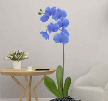 High quality flower wall art decoration of a blue orchid for your space. It is available in any required size needed and easy to apply.