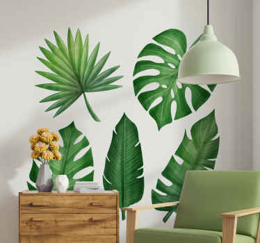 Looking for a realistic and original natural plant wall sticker to decorate a space? we got you covered with this monster and tropical leave plant.