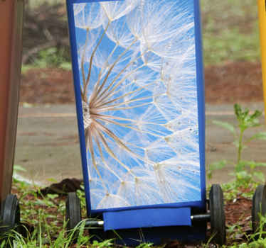 Blue background dandelion  Container decal. Digital print design with a bunch of dandelions.  Easy to apply and remove from flat surfaces!