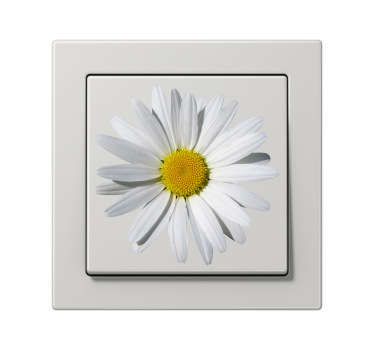 Decorate small areas such as light switches with this daisy decal from our collection of daisy wall stickers.