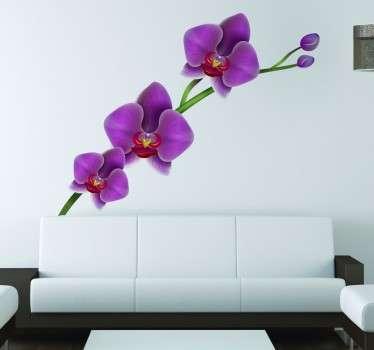Orchidee Wandtattoo