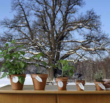 Photo Mural - Shot of a big leafless tree in the winter against a clear blue sky. An ideal feature for decorating the home.