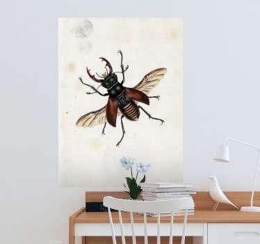 Vinilo ilustración insecto E. Donovan