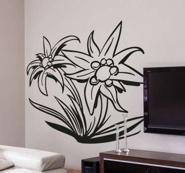Vinilo flor edelweiss Suiza