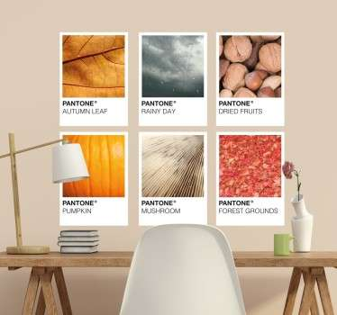 The Wall sticker consists of six different autumn pictures (autumn leaf, rainy day, dried fruit, pumpkin, mushroom and forest floor).